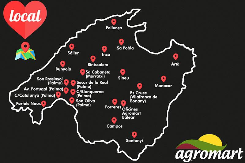 Our establishments on the island of Mallorca