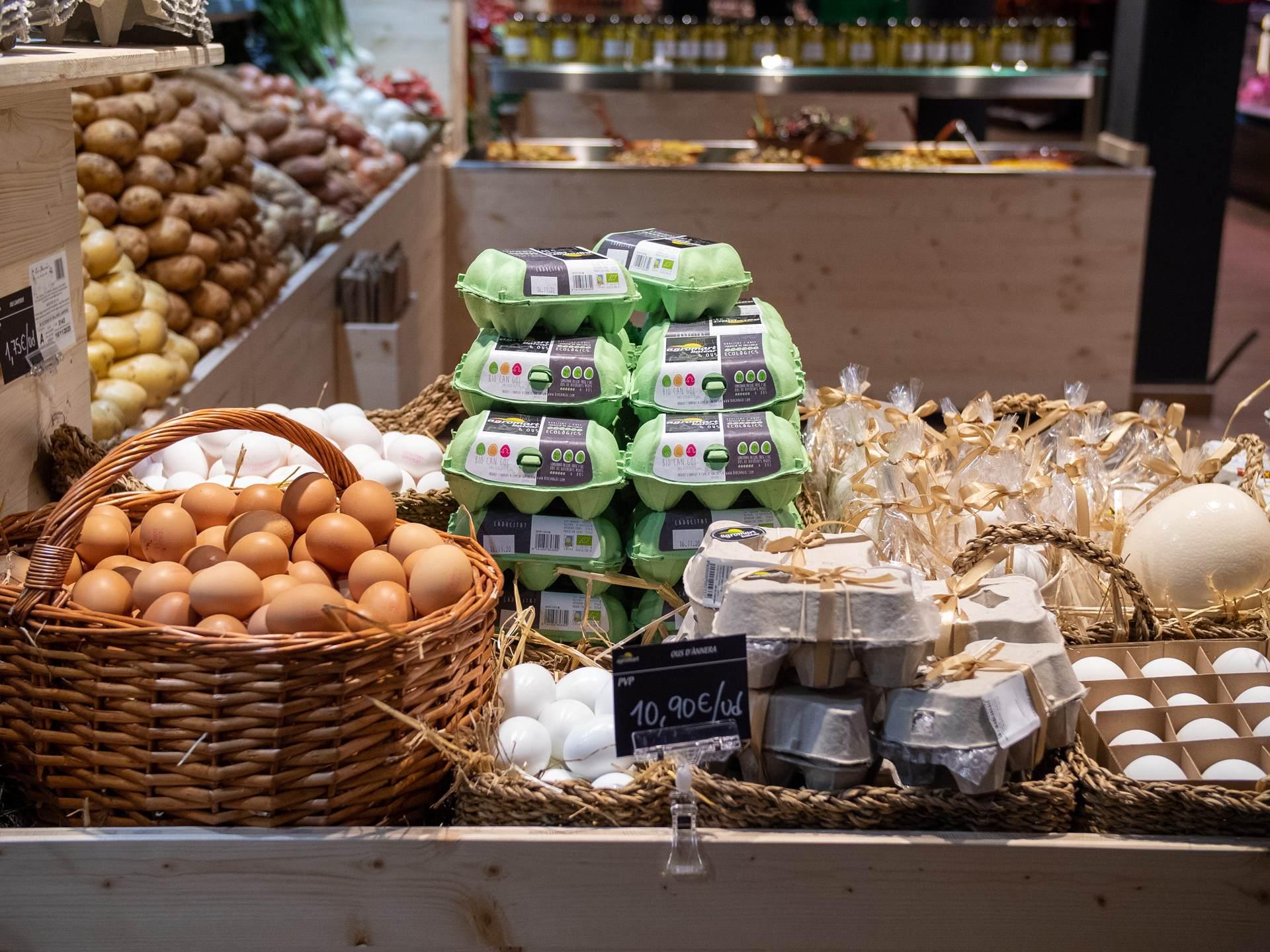 Huevos de alta calidad Agromart